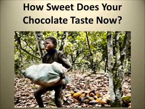Child Labor in the Chocolate Industry