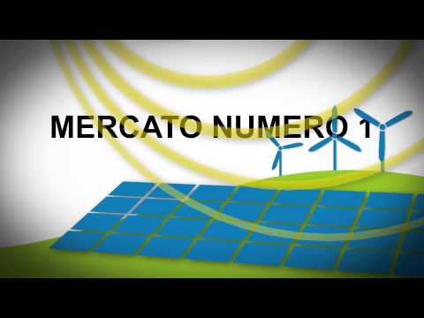 Energy Italy SpA 2013