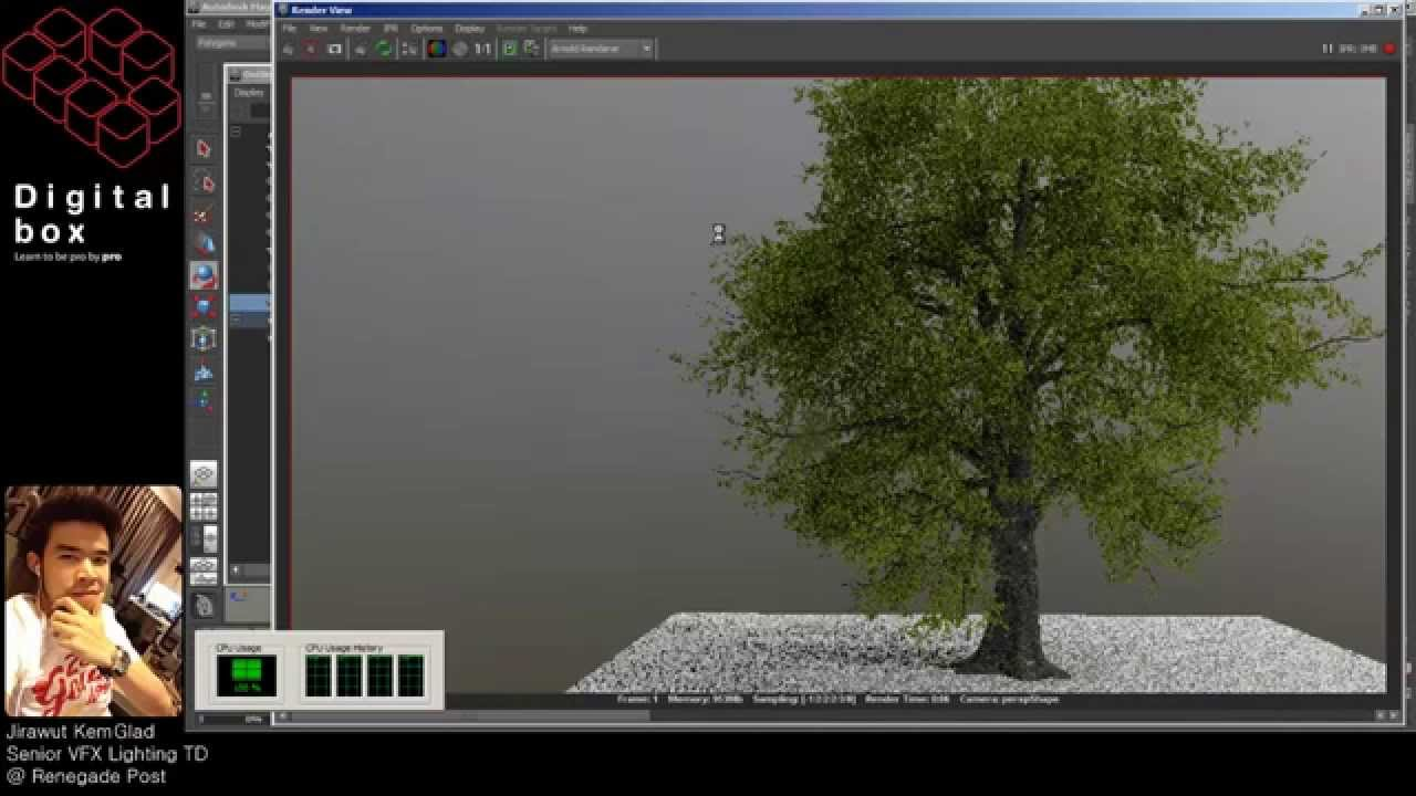 How To Rendering High Details Of Tree With Arnold Amp Maya