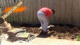 Diy Backyard Vegetable Garden Cool Weekend Project
