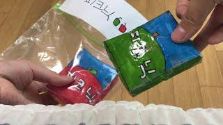 피크닉 2종류 종이스퀴시 소개 포장지도 만들었어요! (…