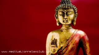 Buddha Sounds & Lounge | Crazy Beautiful Music Lounge, Chillout, Sexy Easy Listening