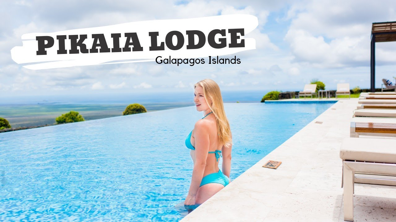 The Galapagos Islands Top Hotel Pikaia Lodge Luxury Travel