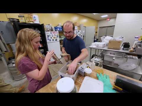 Fermentation Sciences at Appalachian State University