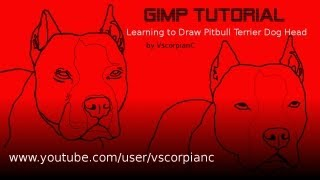 Gimp Tutorial - How To Draw A Pit Bull Terrier Dogs Head By Vscorpianc