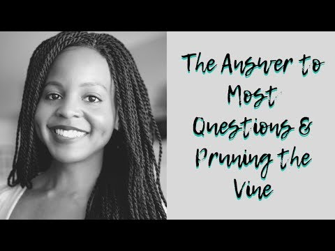 The Answer to Most Questions & Pruning the Vine