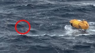 Passengers on This Disney Cruise Spotted Something in the Sea That Shocked Them