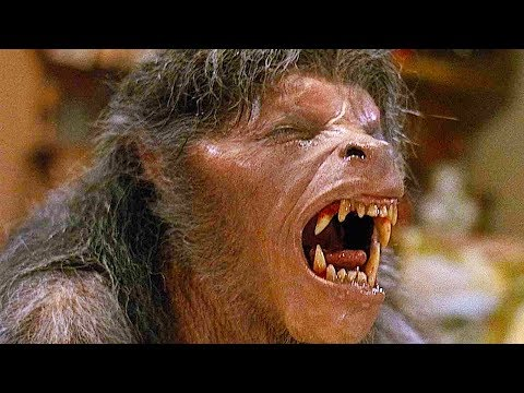 AMERICAN WEREWOLF IN LONDON Transformation HD