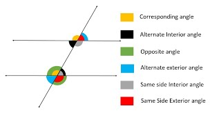 All Angles Formed By Parallel Lines cut by Transverse Line