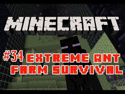 Extreme Ant Farm Survival: Episode 34 - Ghast Duel!