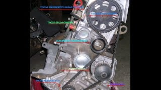 Come sostituire la CINGHIA di DISTRIBUZIONE-How to replace  TIMING BELT
