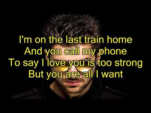 Alok & Liu Feat. Stonefox - All I Want (lyrics)