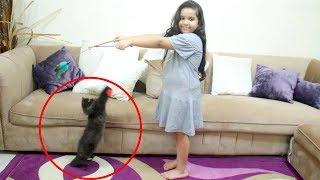 شفا تلعب مع القطة الجديدة !! روعة