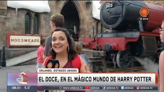 El Doce en el mágico mundo de Harry Potter en Orlando