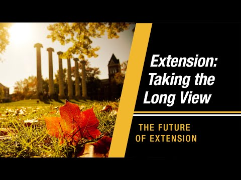 Extension: Taking the Long View