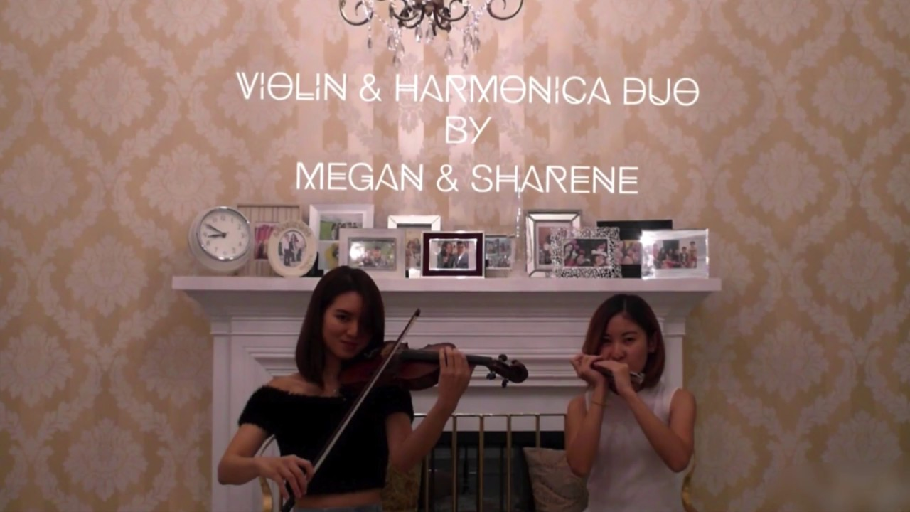 Calum Scott - You Are The Reason (Violin and Harmonica Duo cover by Megan &  Sharene)