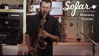 Mammal Hands - Hillum | Sofar London