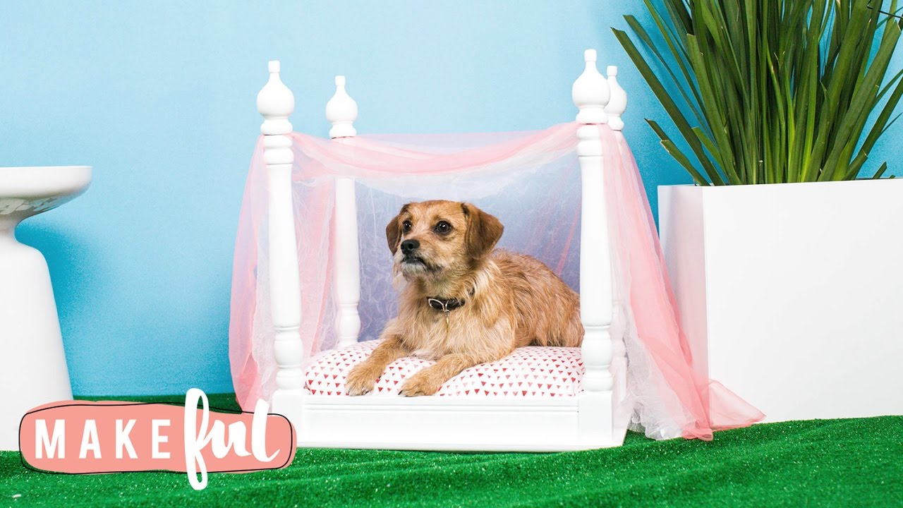 DIY Princess Canopy Pet Bed | Pet Projects : canopy for dogs - memphite.com