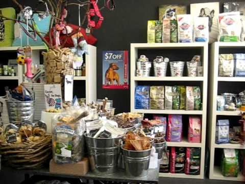 Pawsabout Pet Boutique And Dog Grooming Salon Eastern Suburbs Youtube