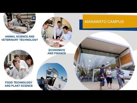 Study Abroad with USAC at Massey University