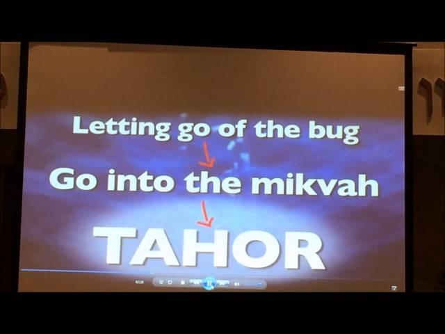Rabbi David Fohrman MYC Selihot Lecture 2014