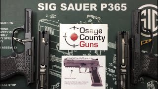 How to remove new and old style P365 striker assembly