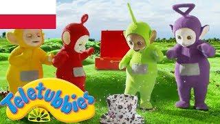 ☆ Teletubisie Po Polsku ☆ sezon 15 epizod 26 ☆ zupełnie nowe odcinki