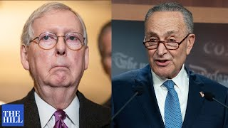 Mitch McConnell SLAMS 'stunt' from Chuck Schumer