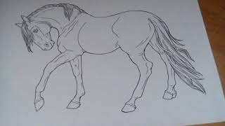 Мои рисунки лошадей.