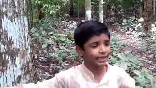 Malayalam Poem- Snehapoorvam Ammakku -Leo Lins