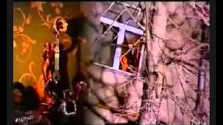 В.Леонтьев - Бродяга-клип на песню.avi
