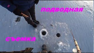 лед 2020 2021 подводная съемка ратан поклевки под водой съемка крупный план смешно до слез