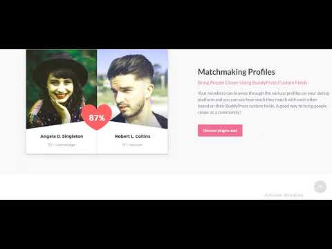 dating website themes wordpress