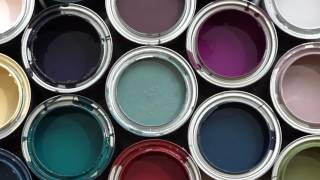 Muralist Mary Lacy Explores Benjamin Moore's Color Trends 2017
