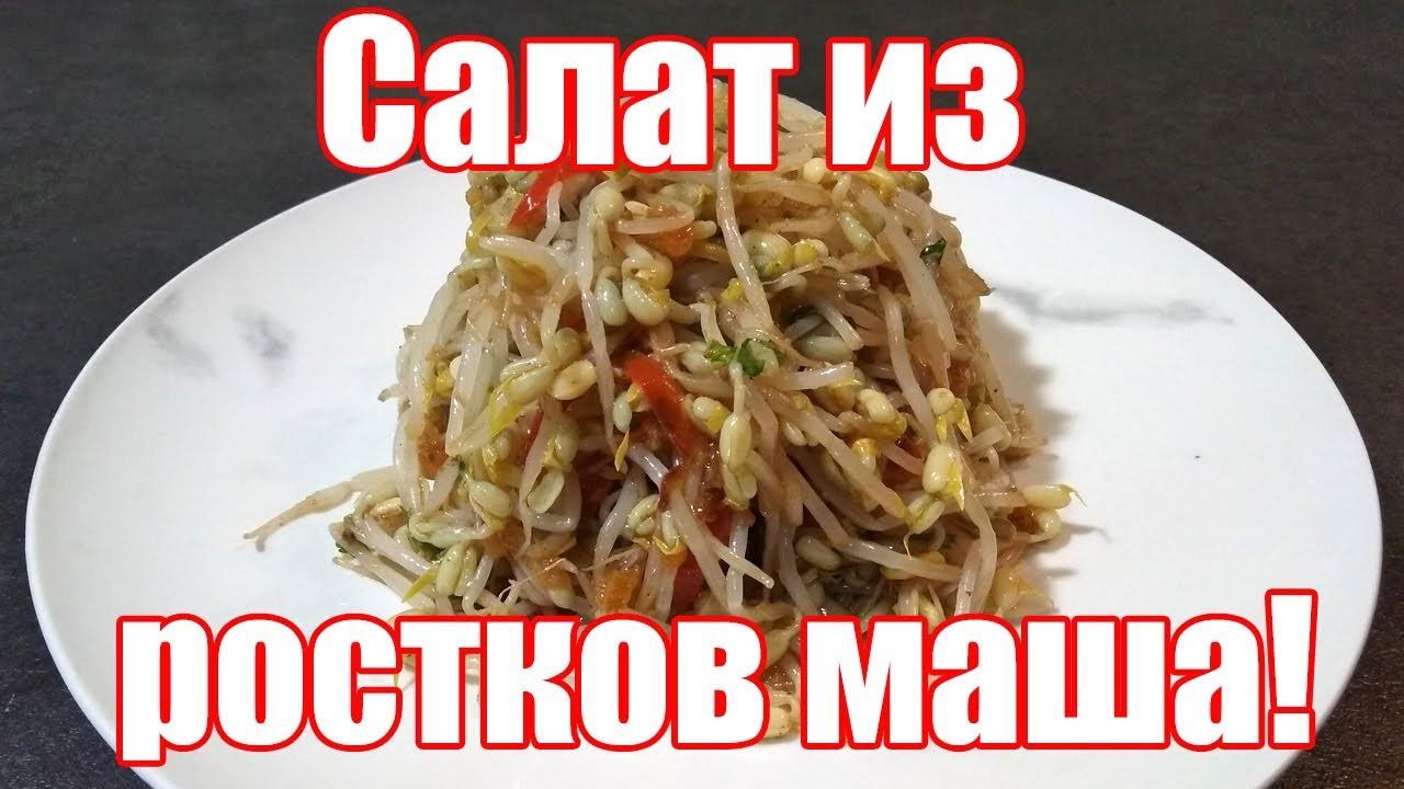 Корейский салат из ростков маша. Рецепт корейского салата из пророщенного маша по корейски.