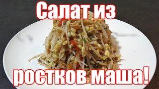 Салат из ростков маша по-корейски. Простой рецепт салата из проросшего маша.