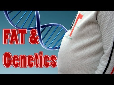 Is Being Fat Genetic? Does a Fat Gene make us overweight or obese? Psychetruth Nutrition