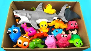 Learn Colors with Surprise Animals - Learn Animals Names for Kids