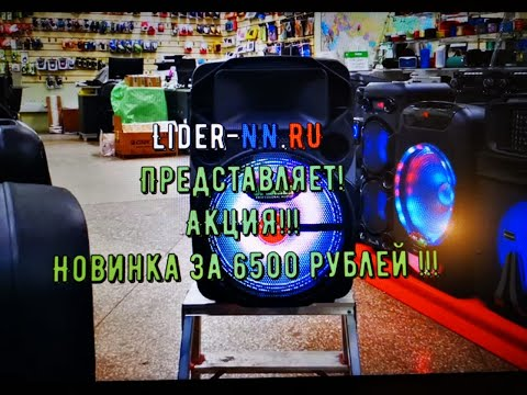 Meirende K 12-9 за 6500 рублей! маленькая и мощная колонка с динамиком 12 дюймов и радиомикрофоном!