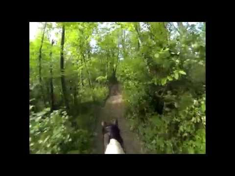 RFHH Cross-country Race (Pace) - FAST 6 Mile Gallop, Steep Hills, Stout Jumps!