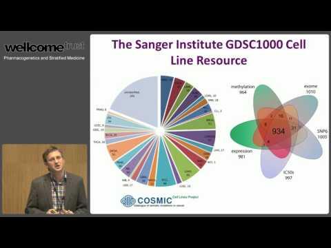 Stratification in Cancer Medicine - Matthew Garnett