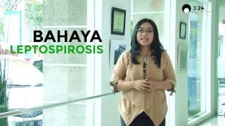 Tanggal Tayang : 05/01/2019 Embrionya adalah program Seputar Jakarta yang pertama mengudara pada 1 N.