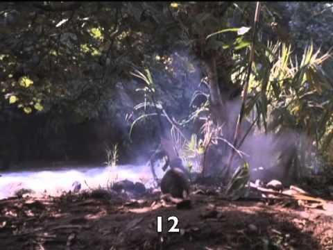 Download Last to Surrender (1999) Roddy Piper killcount
