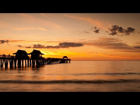 Experience Florida's Gulf Coast | WestJet Vacations
