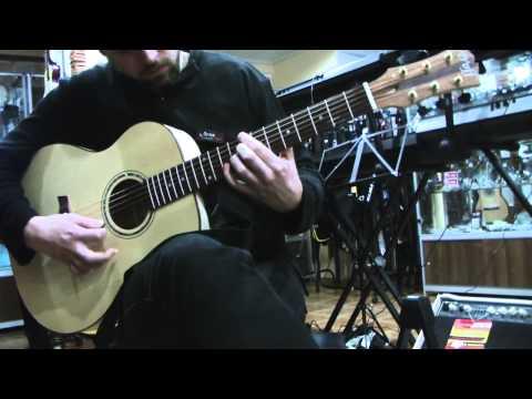 Обзор гитары Forest Group (Андрей Н. - Mix)