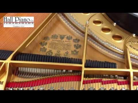 Circus Galop (HD) Live Recording On A Steinway Grand