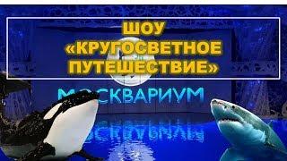 МОСКВАРИУМ. ШОУ «КРУГОСВЕТНОЕ ПУТЕШЕСТВИЕ».Oceanarium in Moscow