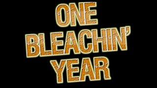 Bleach Wiki YouTube: One Year Anniversary