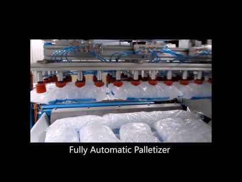 Ice Systems and Supplies Palletizing