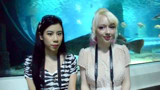 Underwater World - Sunshine Coast Trip Day 1 - Violet Lebeaux Vlogs